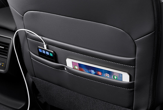 Divided Seatback Pockets